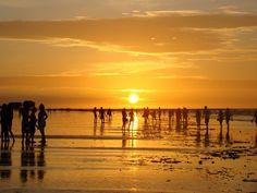Ilha do Algodoal - Pará
