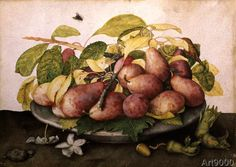 Giovanna Garzoni - Dish with plums and hazelnuts