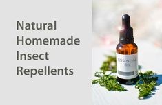 Homemade natural insect repellents #naturalremedies #homemade #herbs #essentialoils #organic