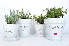 pretty face planters-compressed