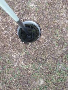 Snakes on golf courses. | 37 Pictures That Prove Australia Is The Craziest