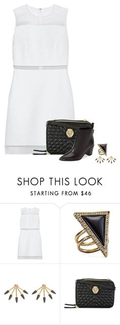 """I Ain't No Spring Chicken"" by livinglifeincolor ❤ liked on Polyvore featuring Victoria, Victoria Beckham, House of Harlow 1960, Pamela Love, Roberto Cavalli and Acne Studios"