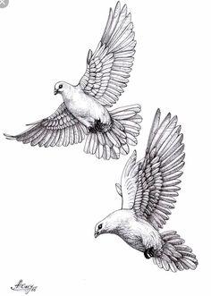 dove sketches animal sketches godfather tattoo pigeon tattoo dove tattoos bird tattoos arm hidden tattoos religious tattoos tattoo stencils