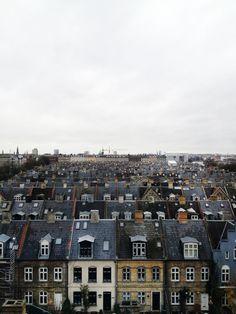 Copenhagen rooftops.