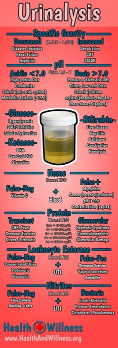 Comprehensive Urinalysis Interpretation