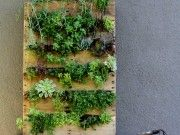 DIY PROJECT: RECYCLED PALLET VERTICAL GARDEN