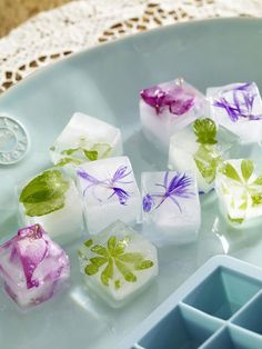 Summer decorating ideas with ice - Flowers and fruits on the rocks