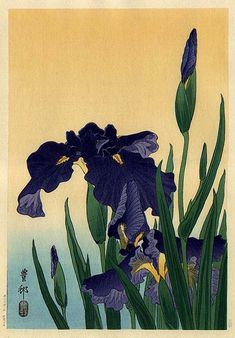 hanga gallery . . . torii gallery: Flowering Iris by Ohara Koson