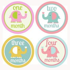 Baby Monthly Stickers, Milestone Stickers, Put on white onesie ® for photo Girls