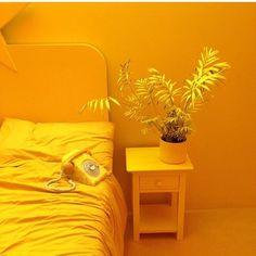 Pretty In Yellow Mellow Yellow, Orange Yellow, Color Yellow, Yellow Photography, Jaune Orange, Aesthetic Colors, Aesthetic Yellow, Yellow Walls, Photo Wall Collage