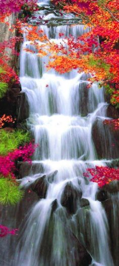 Cascata no Jardim Sankei-en, Yokohama, Japão. ✪ Cascade in Sankei-en Garden in Yokohama, Japan. Beautiful Waterfalls, Beautiful Landscapes, Pretty Pictures, Cool Photos, Beautiful World, Beautiful Places, Beautiful Boys, Simply Beautiful, Gardens Of The World