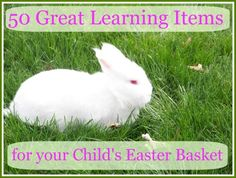 Creative ideas for stuffing those baskets -- many with an Easter or outdoor theme!