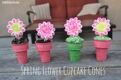 These flower cupcakes are SO stinking cute!