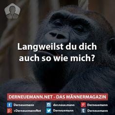 #derneuemann #humor #lustig #witzig #sprüche