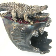 Crocodile rock - on a piranha jaw!