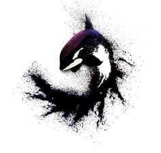 Blackfish - Killer Whale Splatter Ink Tattoo