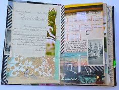 Mary Ann Moss Travel Journal