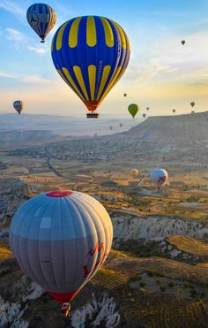 just a bag of thinking water held up briefly by fragile accumulations of calcium. Hot Air Balloon, Cool Pictures, Transportation, Sailing, Balloons, Sky, Amazing, Water, Photography