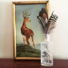 Feathers and vintage oil painting. Feathercoffee.com  Check out more of my treasures @bohofeathers and @hopefulfinds