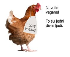 I love vegans !!!