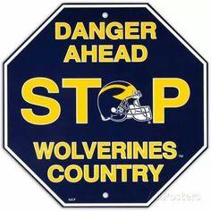 University of Michigan Stop Sign Wall Sign U Of M Football, Michigan Wolverines Football, Football Season, College Football, Colleges In Michigan, Michigan State University, Caves, Michigan Go Blue, Michigan Gear