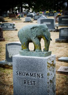In Hugo, OK (Circus City USA) there is a cemetery that has a special section for deceased circus performers. There are some very interesting headstones with elephants, clowns, and big top tents.