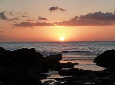 North shore...aloha
