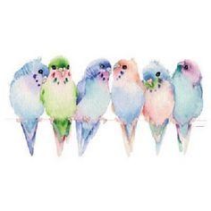 Budgies Parakeet Bird T - Shirt Item no. 212 by AlwaysInStitchesbyLi on Etsy Vogel Wellensittich Pastel Watercolor, Watercolor Bird, Watercolor Paintings, Tattoo Watercolor, Watercolors, Watercolor Portraits, Watercolor Landscape, Watercolor Artists, Abstract Paintings