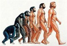 The evolution of FedEx SEO