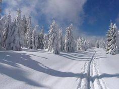 Přání do nového roku 2014 - AHOL Winter Landscape, Czech Republic, Snow, Mountains, Places, Nature, Travel, Outdoor, Livros