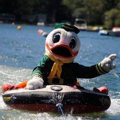 The Duck #GoDucks