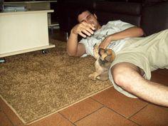 O Victor é meu parceiro ! Toca aqui amigão. Dogs, Animals, High Five, Bud, Animales, Animaux, Pet Dogs, Doggies, Animal