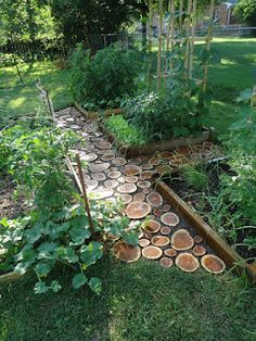 This unique pathway is made with 2 inch thick slices of log pressed into the ground. Here is an update on the project with improvements.