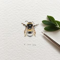 Artist Creates a Detailed Miniature Painting Every Single Day - Miniature Paintings Animal Paintings Watercolor Animals Irene Malakhova - Watercolor Animals, Watercolor Art, Animal Paintings, Animal Drawings, Bumble Bee Tattoo, Honey Bee Tattoo, 1 Tattoo, Bee Art, Global Art