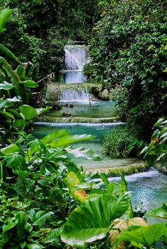 Mele Cascades, Vanuatu South Pacific. A welcome drop of cool water amongst the sun drenched South Pacific. Beautiful.
