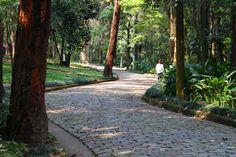 Parque Guarapiranga, São Paulo, Brasil, Roberto Burle Marx, 1973