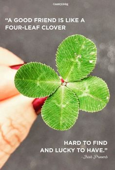 17 Ways to Bring St. Patrick's Day into Your Home. With St Patrick's day on the horizon I've been gearing up my house in green! Here are 17 ways to bring St Patrick's Day into YOUR home! Friends Are Like, Best Friends, Friends Forever, Famous Friendship Quotes, Happy Friendship, Good Luck Spells, Coaching Personal, Irish Proverbs, Happy Marriage