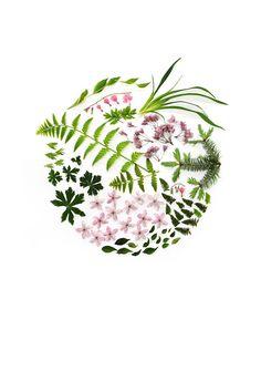 spring circle (mary jo hoffman)