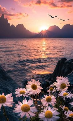 wallpaper backgrounds beautiful nature jura jura jura jura,recipes jura jura Related posts:New Cost-Free 100 Last Minute Elf on the Shelf Ideas For Kids Which are Creativ. - Elf on the she.Happy New Year Images, Wallpapers. Flower Iphone Wallpaper, Sunset Wallpaper, Iphone Background Wallpaper, Iphone Wallpapers, Dope Wallpapers, Galaxy Wallpaper, Wallpapers Of Nature, Pretty Wallpapers Tumblr, Greece Wallpaper
