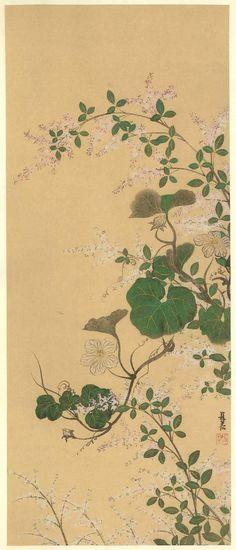 Ogata Korin, Japanese traditional painter, craftsman (1658-1716) - 尾形光琳 (1658-1716) 江戸時代の画家, 工芸家
