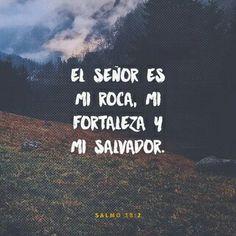 El Señor es mi roca, mi fortaleza y mi salvador; mi Dios es mi roca, en quien encuentro protección. Él es mi escudo, el poder que me salva y mi lugar seguro. Salmos 18:2 NTV
