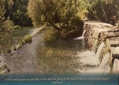 The scene is of the headwaters of the Jordan River which flows from the base of Mt. Hermon all the way to the Dead Sea.