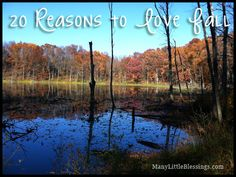 20 Reasons to Love Fall
