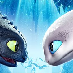 Toothless and the Lightfury! Toothless And Stitch, Toothless Dragon, Hiccup And Toothless, Skyrim Dragon, Dragon 2, Httyd Dragons, Cute Dragons, Httyd 3, How To Train Dragon