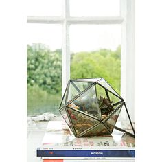 Urban Grow Star Terrarium Planter in Bronze (€57) ❤ liked on Polyvore featuring home, outdoors, outdoor decor, assorted, bronze flower pot and bronze planter