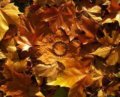 holy circle | land art by doubleyou_em, via Flickr