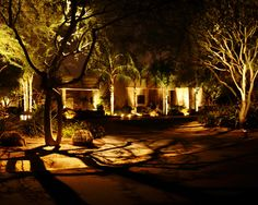 Outdoor Landscape Lighting Design Not just lighting trees, but creating shadows with them!