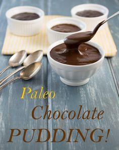 Paleo Chocolate Pudding Dessert Recipe   Gluten & Grain Free that Includes Dark Chocolate Chips & Coconut Milk