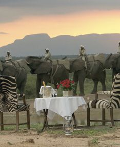 Majestic mountains, stunning savannahs, breathtaking vistas and wildlife beyond your imagination. This is safari.