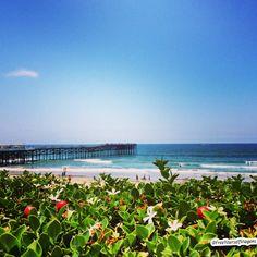 Pensando nas suas próximas férias? O Blog Free Yourself Viagens pode te ajudar com destinos incríveis sobre a Califórnia.